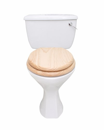 Upgrading Bathroom - Toilet